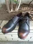 PADRONE : EMBOSSED DERBY SHOES (BROWN)